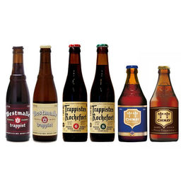 Trappist Pack for Beginner